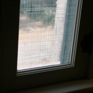 Window film detail