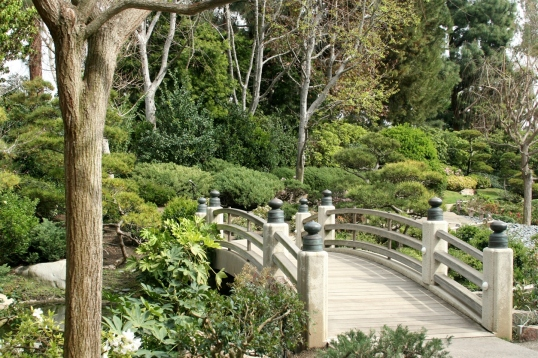 A gently arching bridge over the serene lake.