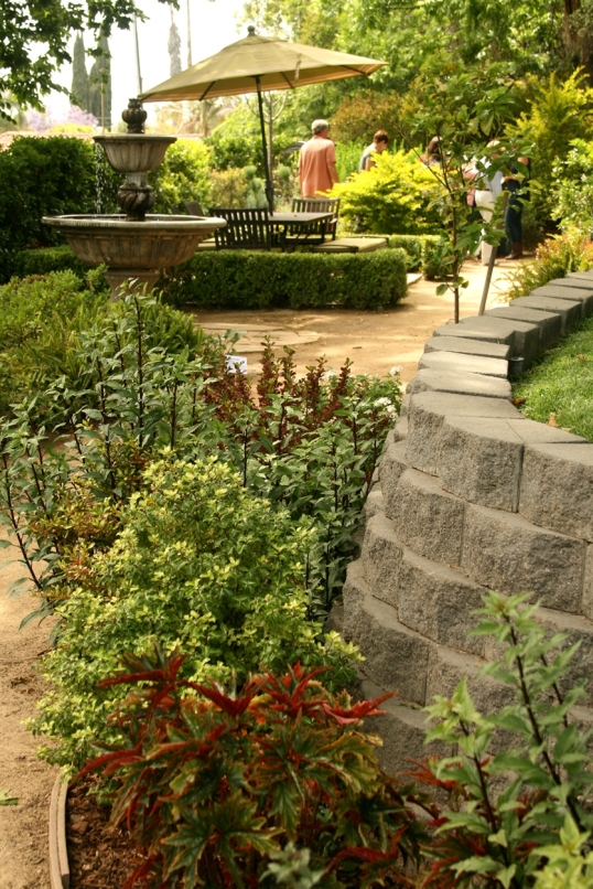 Love the colors and textures of the plants lining this path!